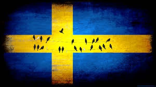 nombres de pajaros suecos